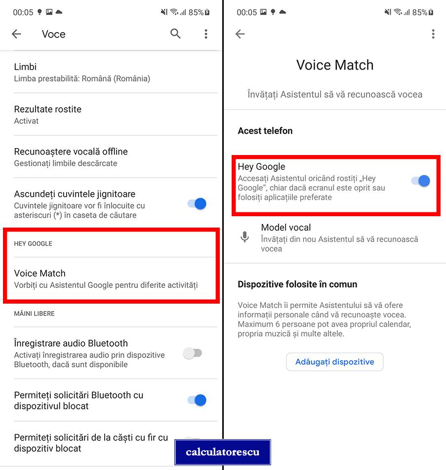 Dezactivare OK Google